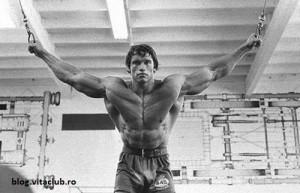 culturism -hipertrofie musculara