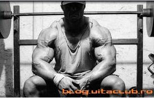 scaderea nivelului de insulina este legata de arderea glicogenului in timpul antrenamentelor