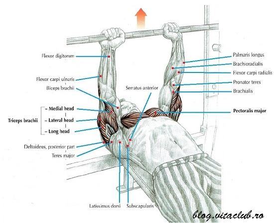 impins cu priza ingusta pentru triceps