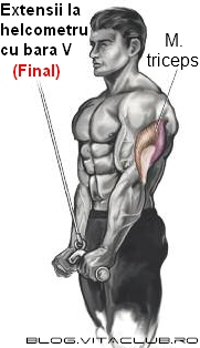 aparate si exercitii pentru triceps