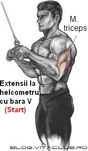 extensia tricepsului la cablu cu bara si sfoara