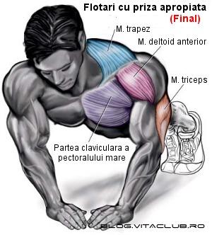 flotarile cu palmele apropiate sunt un exercitiu pentru triceps
