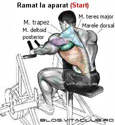 exercitii pentru spate cu ramat la aparat