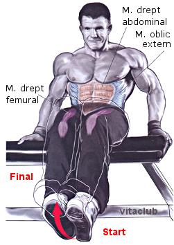 exercitii pentru abdomen pe banca orizontala