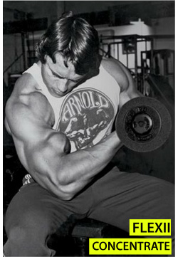 Flexiile concentrate efectuate de Arnold sunt un exercitiu pentru biceps