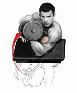 Flexiile Scott cu gantere sunt un exercitiu excelent pentru brate ce permite izolarea muschiului biceps