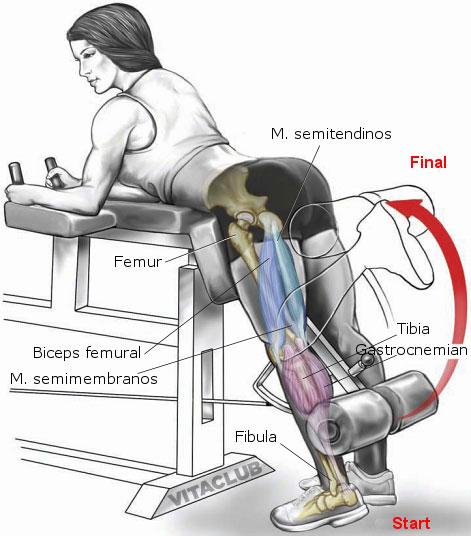 Flexia coapsei cu un picior din stand e un exercitiu pentru zona posterioara a coapsei, in principal bicepsul femural