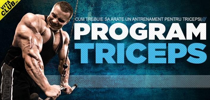poza program de antrenament pentru tricepsi