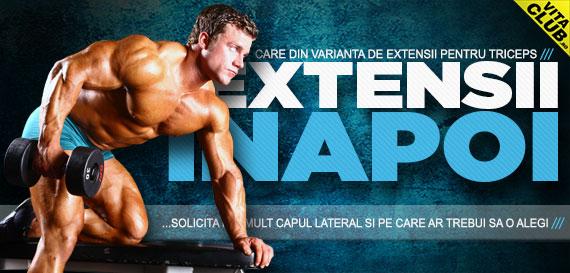 exercitii cu gantere sau la cabluri pentru triceps