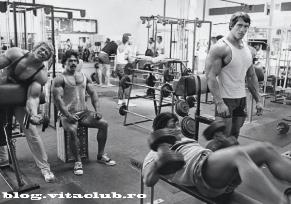 dezvoltare musculara cresterea masei musculare exercitii forta cele mai bune exercitii pentru masa musculara