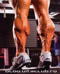 cele mai bune exercitii pentru niste gambe de monstru