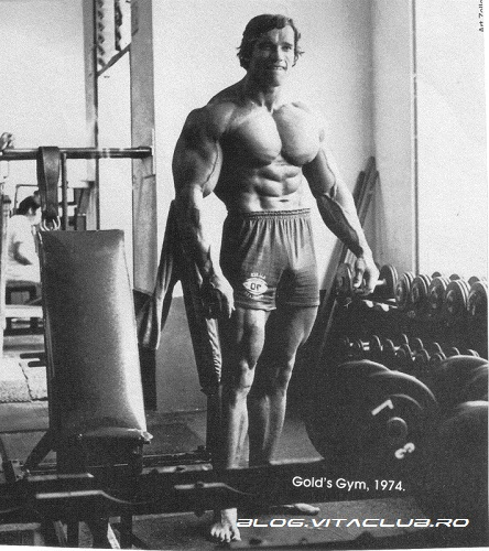 arnold Schwarzenegger culturism bodybuilding