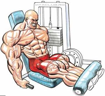crestere forta si masa musculara culturism