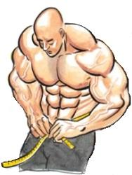 obezitatea reduce nivelul testosteronului liber in culturism
