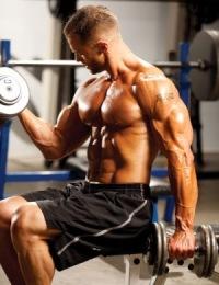 antrenament pentru biceps cu gantere sau cu bara dreapta