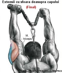 extensiile pentru triceps cu sfoara la spate  sunt un exercitiu excelent pentru triceps