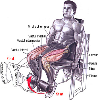 extensia picioarelor  din sezand la aparat pentru muschiul cvadriceps