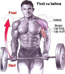 flexiile cu haltera din picioare este un exercitiu pentru muschiul biceps