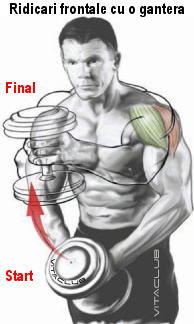 ridicari frontale cu o gantera in ambele maini pentru deltoidul anterior