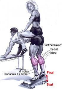 Ridicarile pe varfuri din stand aplecat este un exercitiu pentru gambe
