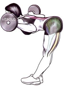 aplecarile in fata cu haltera pe umeri sunt un exercitiu  pentru fund si biceps femural