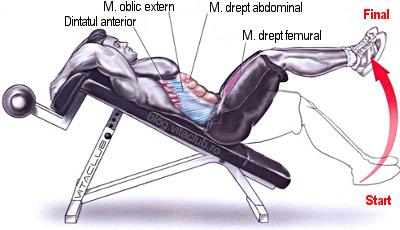 poza exercitii pentru abdomen la banca declinata