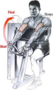 flexii la aparatul Scott pentru biceps
