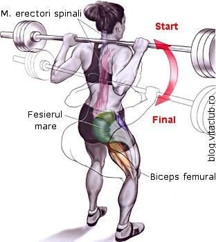 indreptarile cu haltera la ceafa sunt un exercitiu pentru bicepsul femural si fesieri