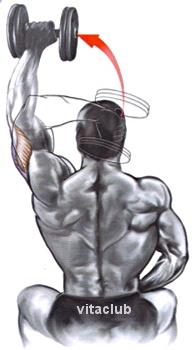 extensii cu un brat cu gantera deasupra capului pentru triceps