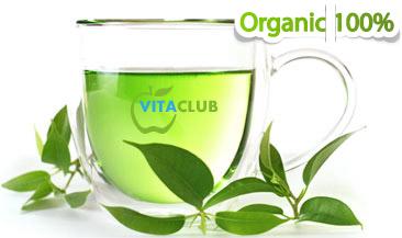 proprietati si benficii ale consumului de ceai verde