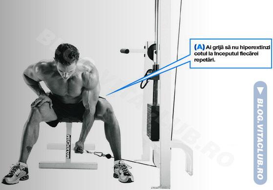 exercitii pentru biceps la helcometru din sezand
