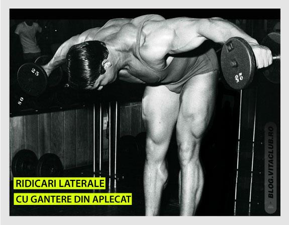arnold efectuand exercitiul ridicari laterale cu gantere din aplecat