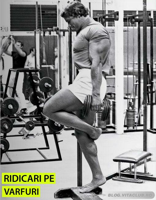 Poza Arnold executand ridicari pe varfuri pentru gambe