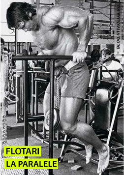 Arnold facand flotari la paralele cu gantera atasata de centura