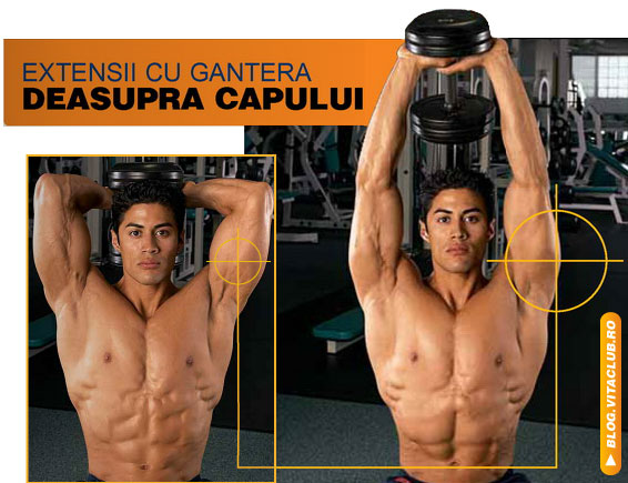 extensii cu gantera deasupra capului pentru triceps din sezand