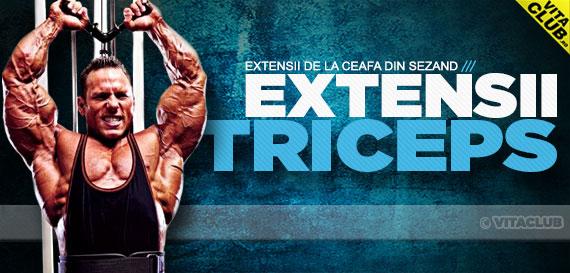 Extensii pentru triceps cu bara deasupra capului din sezand