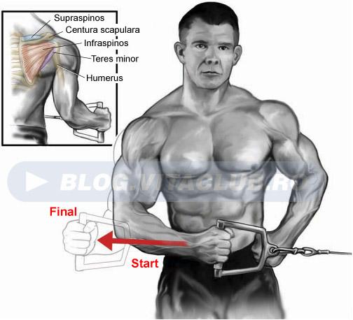 exercitii la cablu pentru articulatia umarului