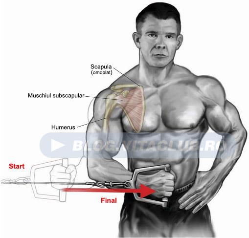 acest tip de miscari previn accidentarile si durerile de la nivelul articulatiei umarului